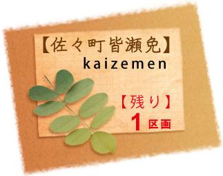 kaizemen2-h-18.5.jpg