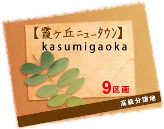 kasumigaoka_h30.1.jpg