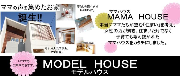 model28.4.27.jpg